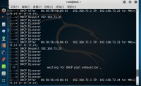 使用kali进行DHCP Server压力测试